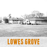Lowes Grove